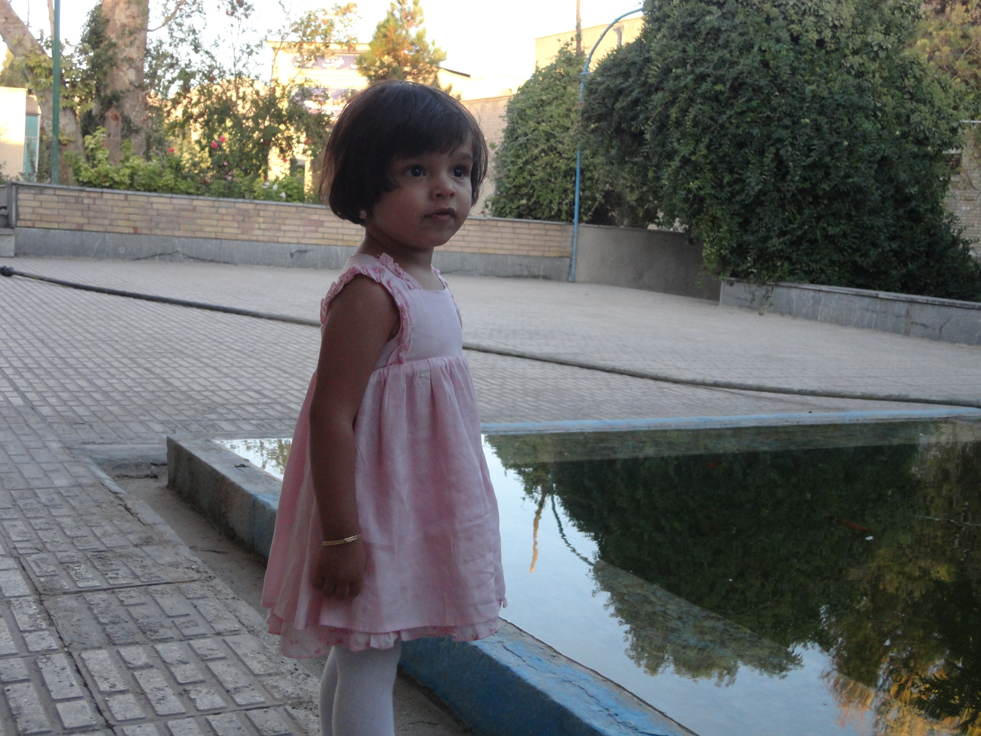 http://avin89.persiangig.com/DSC01624.JPG